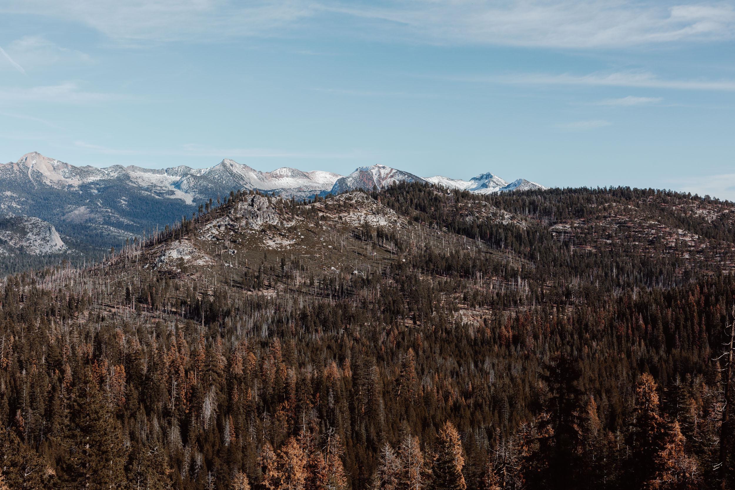 yosemite-glacier-point-road-hike-and-shoot-1.jpg