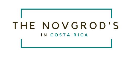 novgrods-logo.png