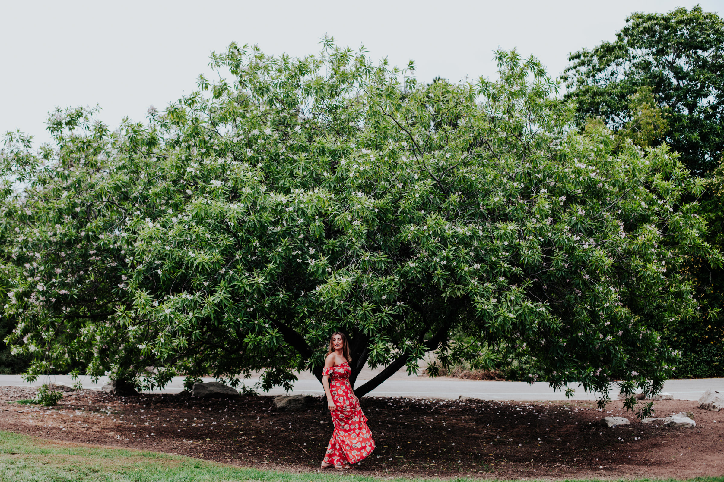 terranea-resort-palos-verdes-california-wedding-photography-cove-los-angeles-pierce-76.jpg