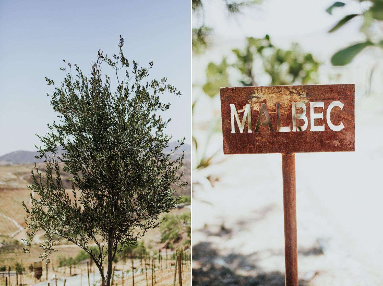 Boda-Guanajuato-Camino-de-Vinos-San-Miguel-Allende-Wedding-Fotografia-Paulina-Mauricio-Pierce0235.JPG