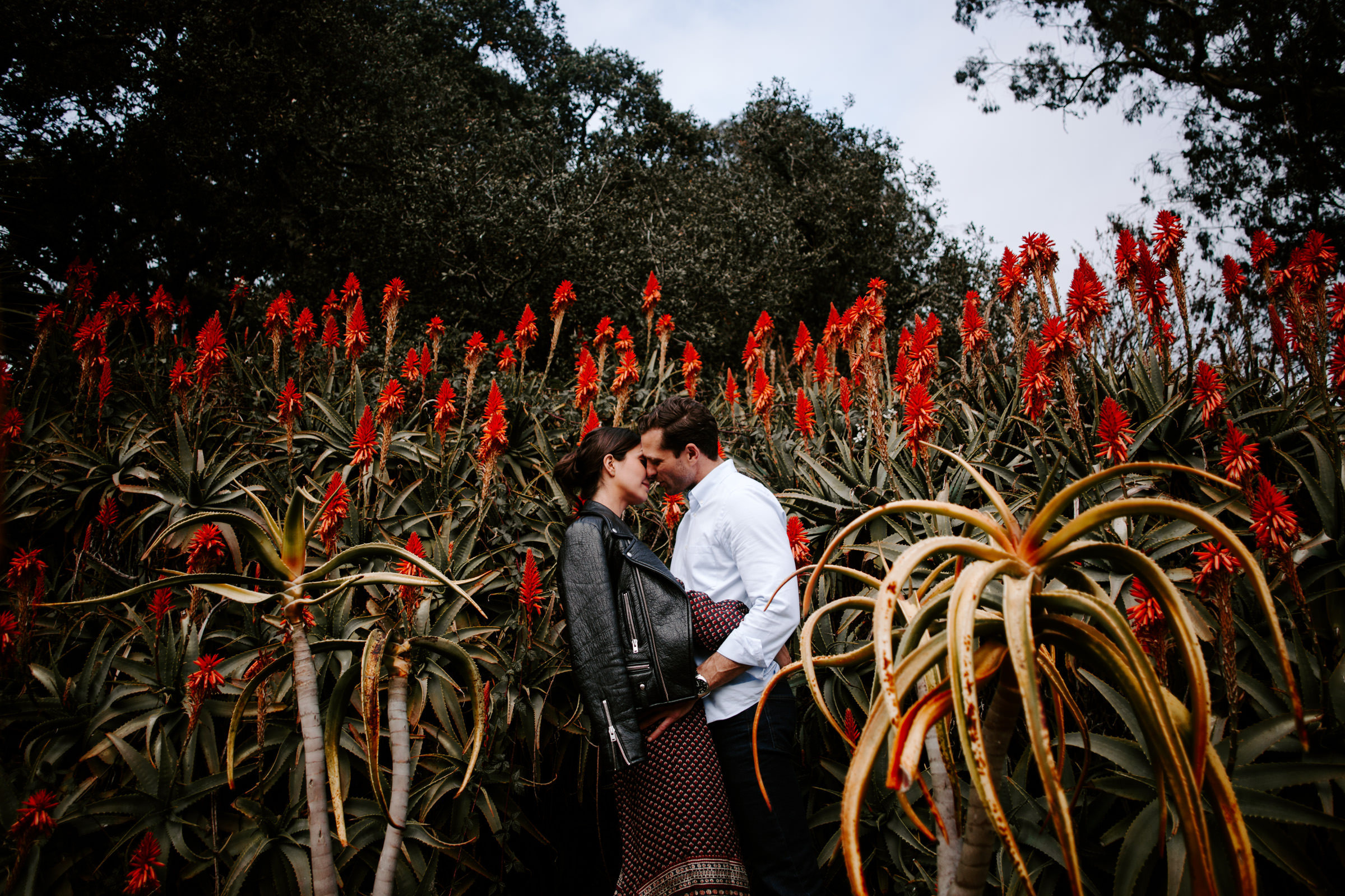 San-Francisco-Photographer-Pierce-Weddings-87.jpg
