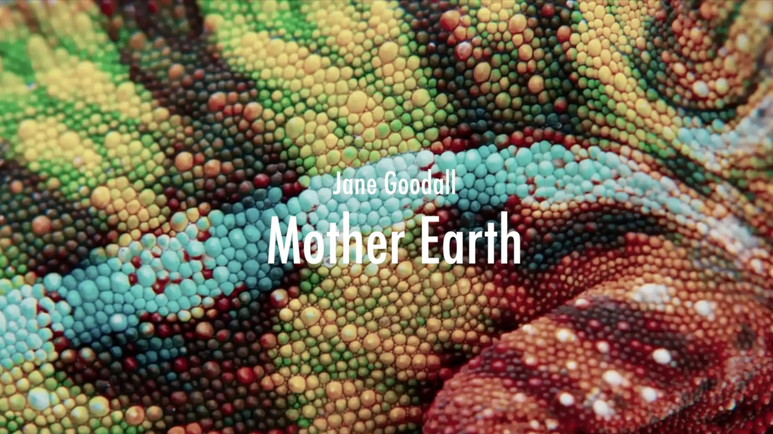 Mother Earth -
