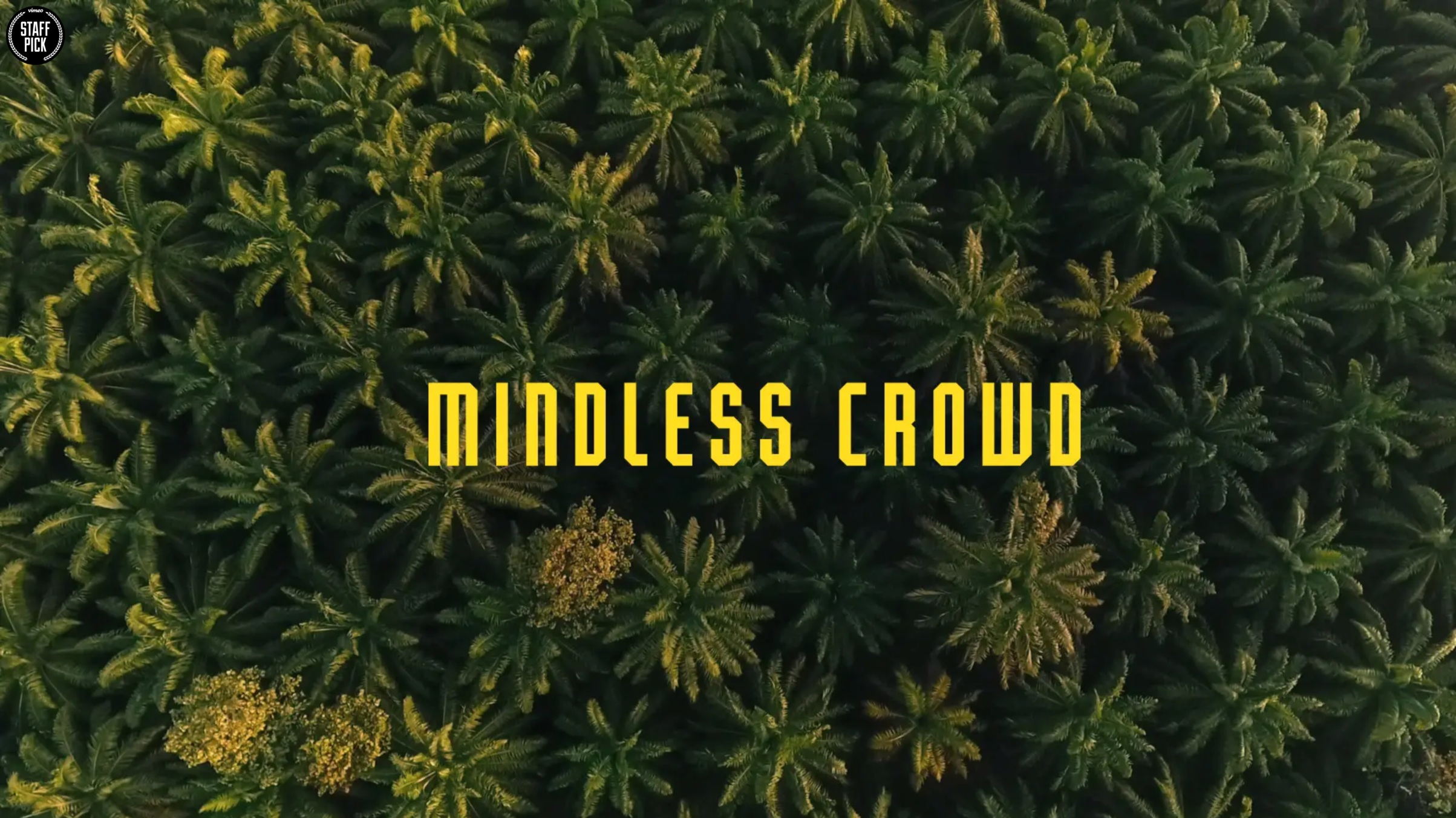 Mindless Crowd -