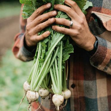 turnips.jpg