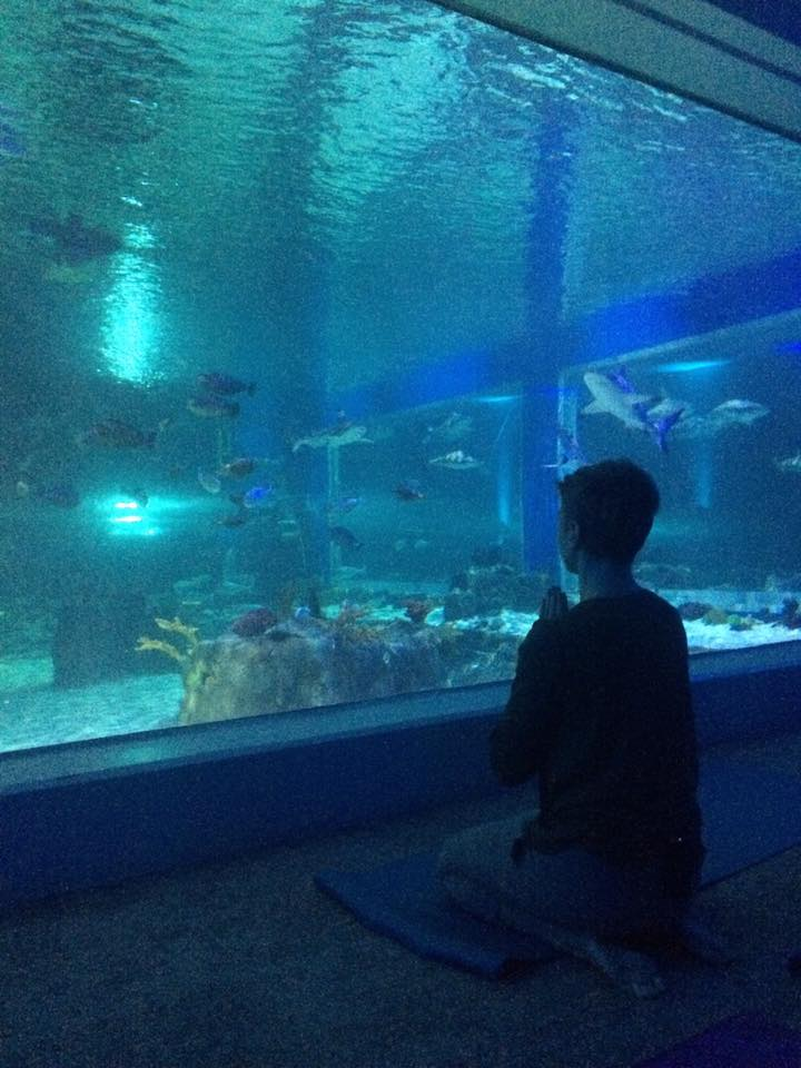 amanda jones meditation aquarium