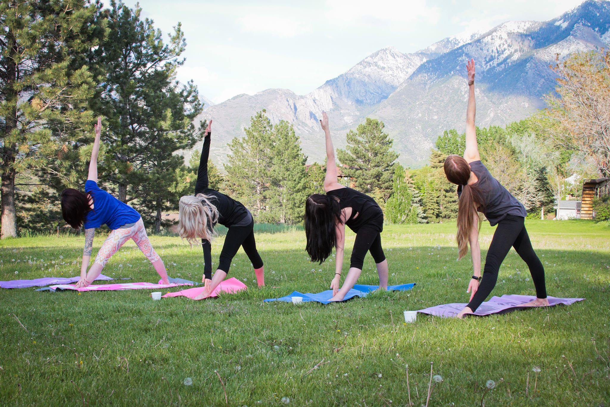 Mountain Cabin Retreat - Enjoy MINDFULNESS TRAINING, meditation, yoga & teambuilding in an all-day or afternoon retreat that builds attendees up into their own experts on healthy living, growth mindset and leadership.