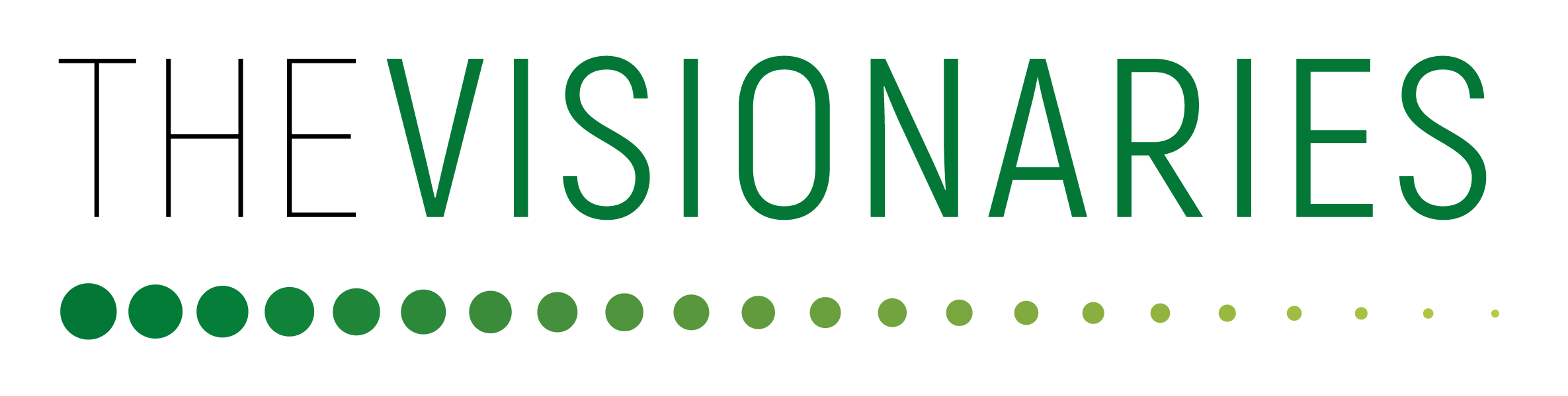 Logo_visionaries.png