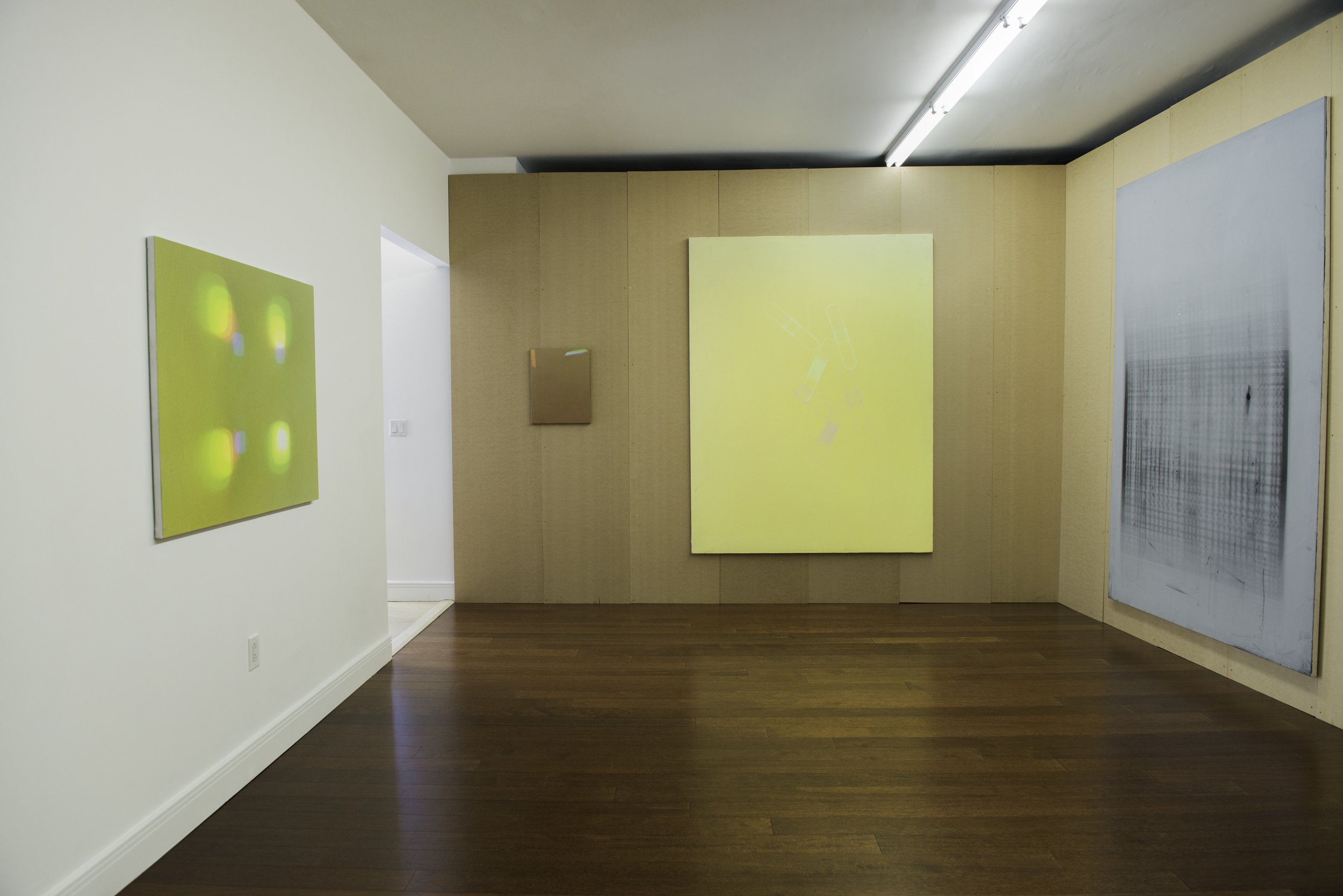 Installation image James Miller: Paintings, 2016.  Courtesy Meyohas