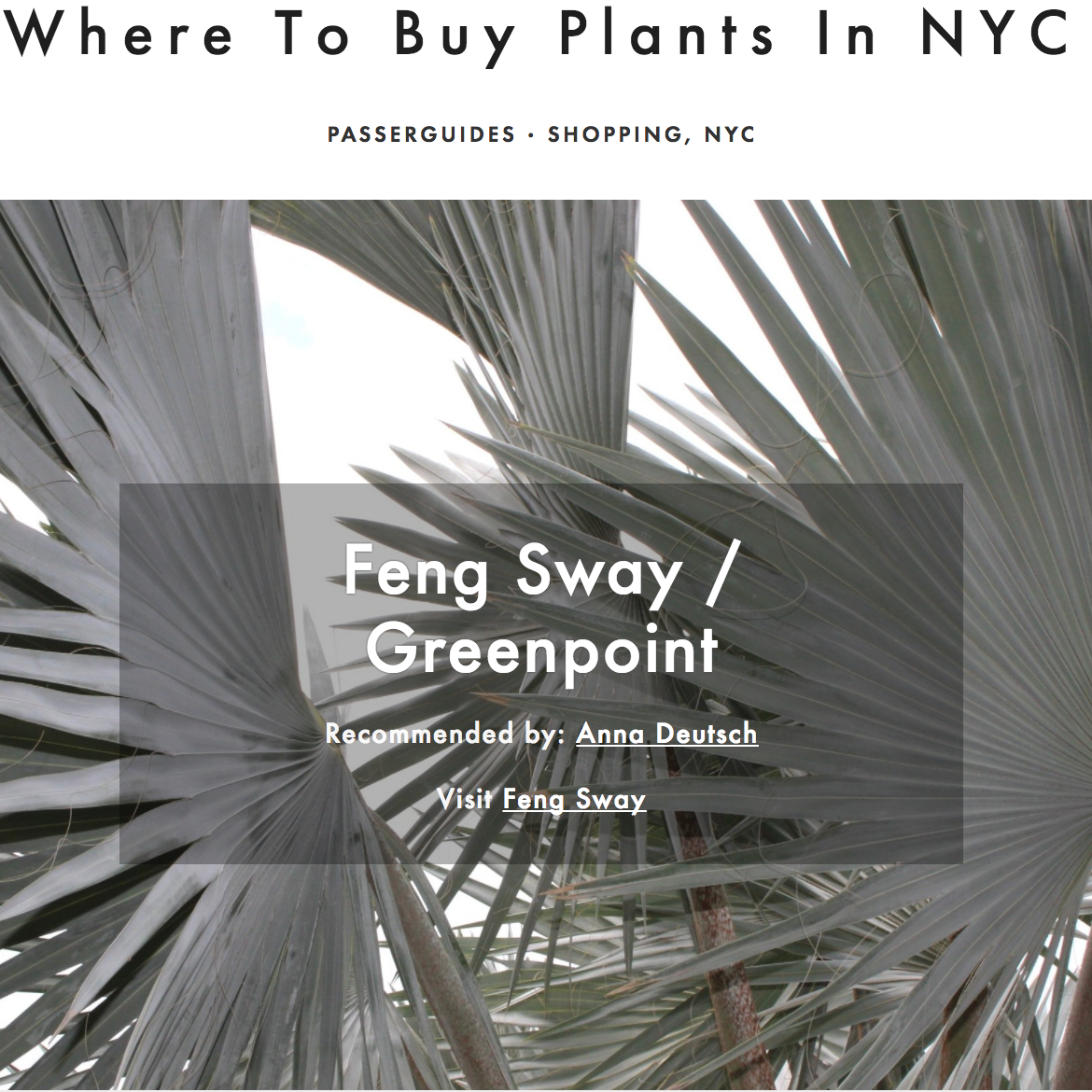 Passerbuys,  Where to Buy Plants in NYC