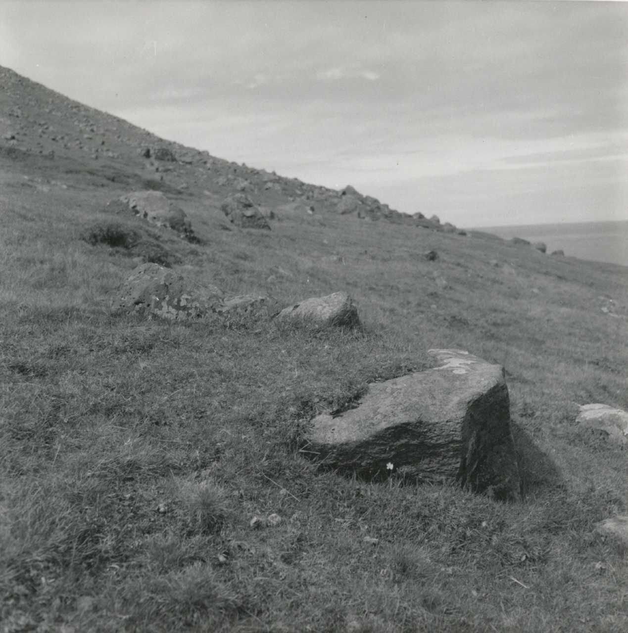 """Løftestenens oprindelige placering i Mules udmark på det stykke nord for bøen, som kaldes """"yvir á havbrúggv"""". Den var anbragt, hævet op på nogle mindre sten, på den store sten i forgrunden. B.S. fot. aug. 1961."""
