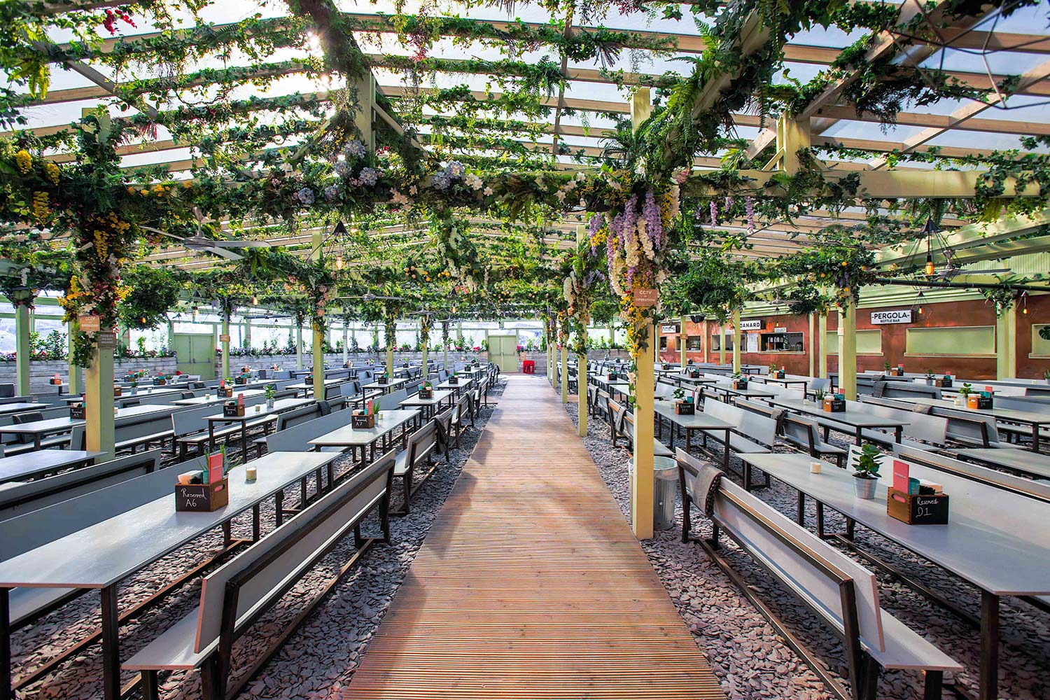 PERGOLA PADDINGTON SUMMER 2018