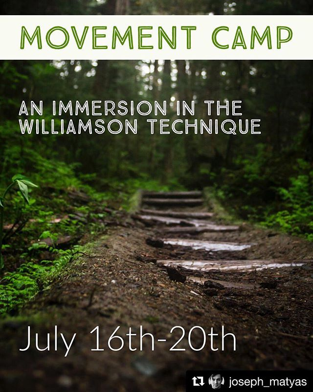 """I'll be teaching a series of retreats this summer - think artistic project mapping, luxurious time in the woods, solstice celebrations, fully expressed motion and sound. The first is an actor's movement retreat, and it's open for registration. ・・・ Four nights, five days, all-inclusive at the Ronora Lodge and Retreat Center in southeast Michigan, one hundred miles from Chicago.  Four hundred acres of nature preserve are home to a private lake, miles of trail, wildlife, fire pits and s'mores: childhood camp dream meets sensual movement training. Ten class sessions, time to be still, and clean food to refresh and reset your instrument.  Here's a sample of the daily schedule:  6am: Coffee Brewed 7am: Morning Bell  7:30am: Session, Motion & Sound * Time in which to do Nothing * Circular Motion/Grounding * Pleasure of Sound/Harmonies of the Room * This is my Song/This is my Dance  9am: Breakfast, Time on Land  12pm: Afternoon Warm-up 12:30pm: Lunch  1:30pm-4pm: Session, Physical Technique * Review Floor Variations * Slump/Upward Arch * Circular Swings * Seated Variations  430pm: Time on Land  6:30pm: Session, Discussion on Expansive Behavior * Creating Drunk * Limitless Release * Why we say """"I have no apologies""""  8pm: Dinner, Poetry Readings  SEEKING: Certified lifeguard and retreat assistants. Work-study scholarships available.  Tuition and info at josephmatyas.com/retreat (link in bio). See you in the woods!"""