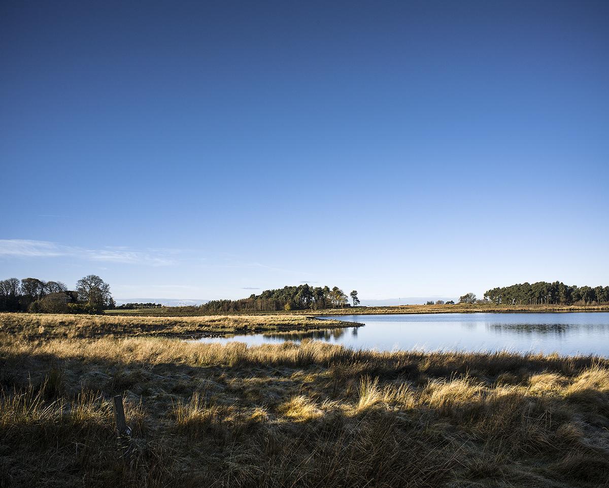 201711-harperrig-reservoir-pentlands.jpg