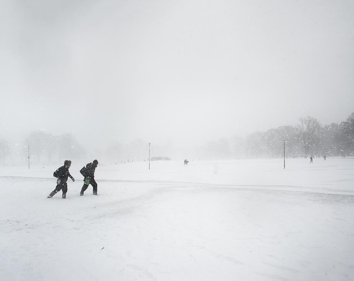 2018 02 edin meadows snow.jpg