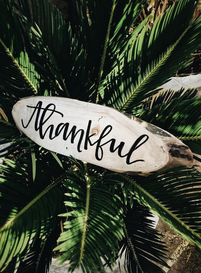 thankful.jpeg