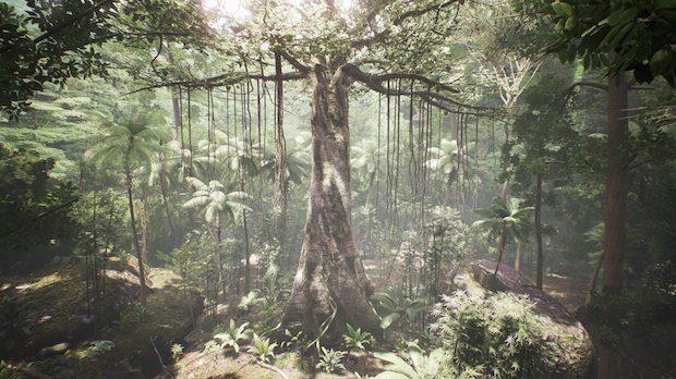 tree-620x348.jpg