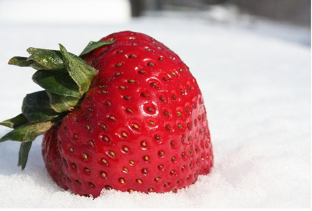 strawberry-snow.jpg