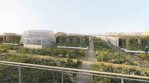 6-the-worlds-largest-rooftop-farm.png.jpeg