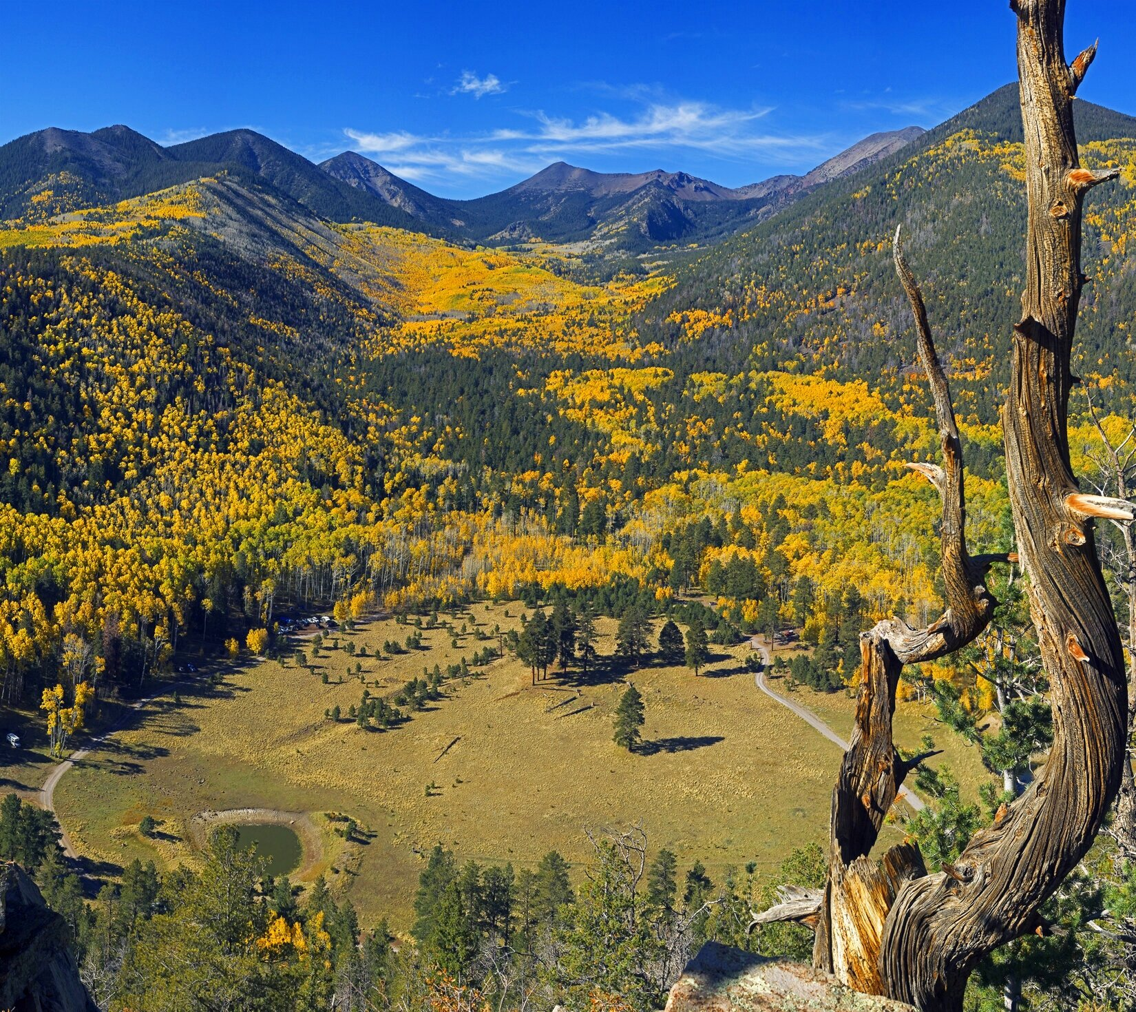Image courtesy of Discover Flagstaff