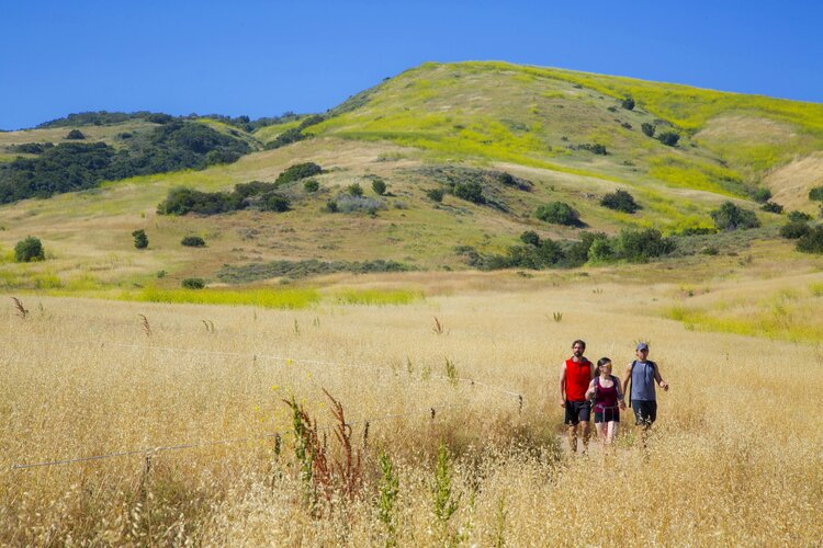 Group Hiking The Bommer Canyon Trail