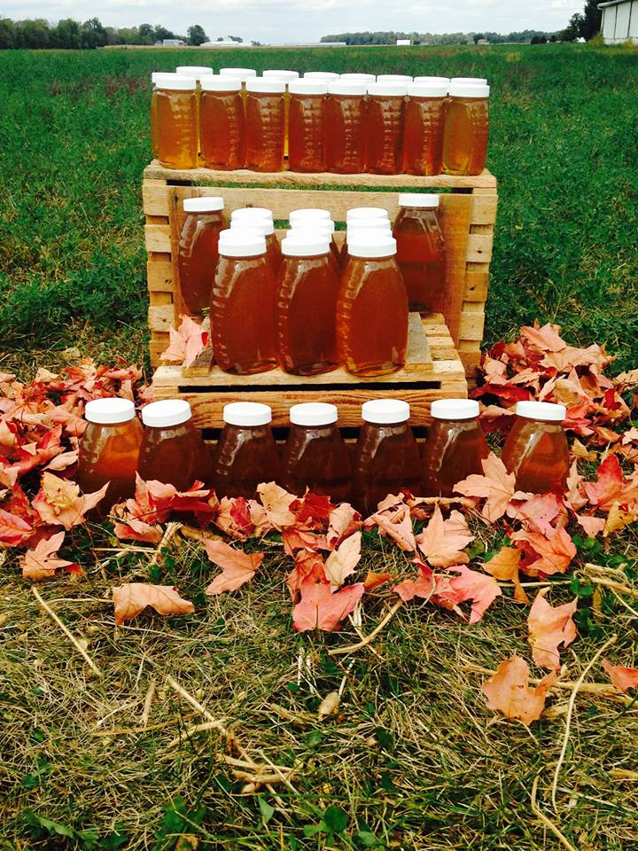 The honey harvest for our first year beekeeping - 2015