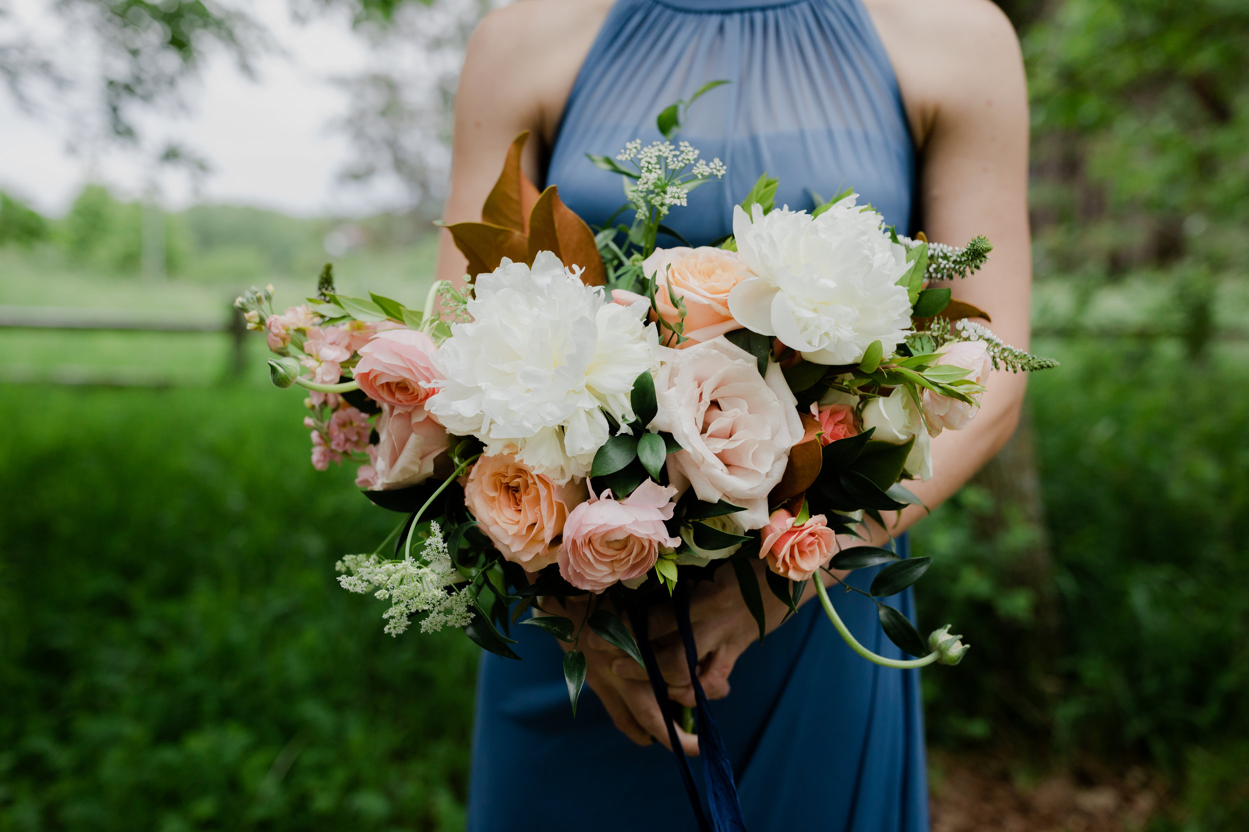 colleen biese photography
