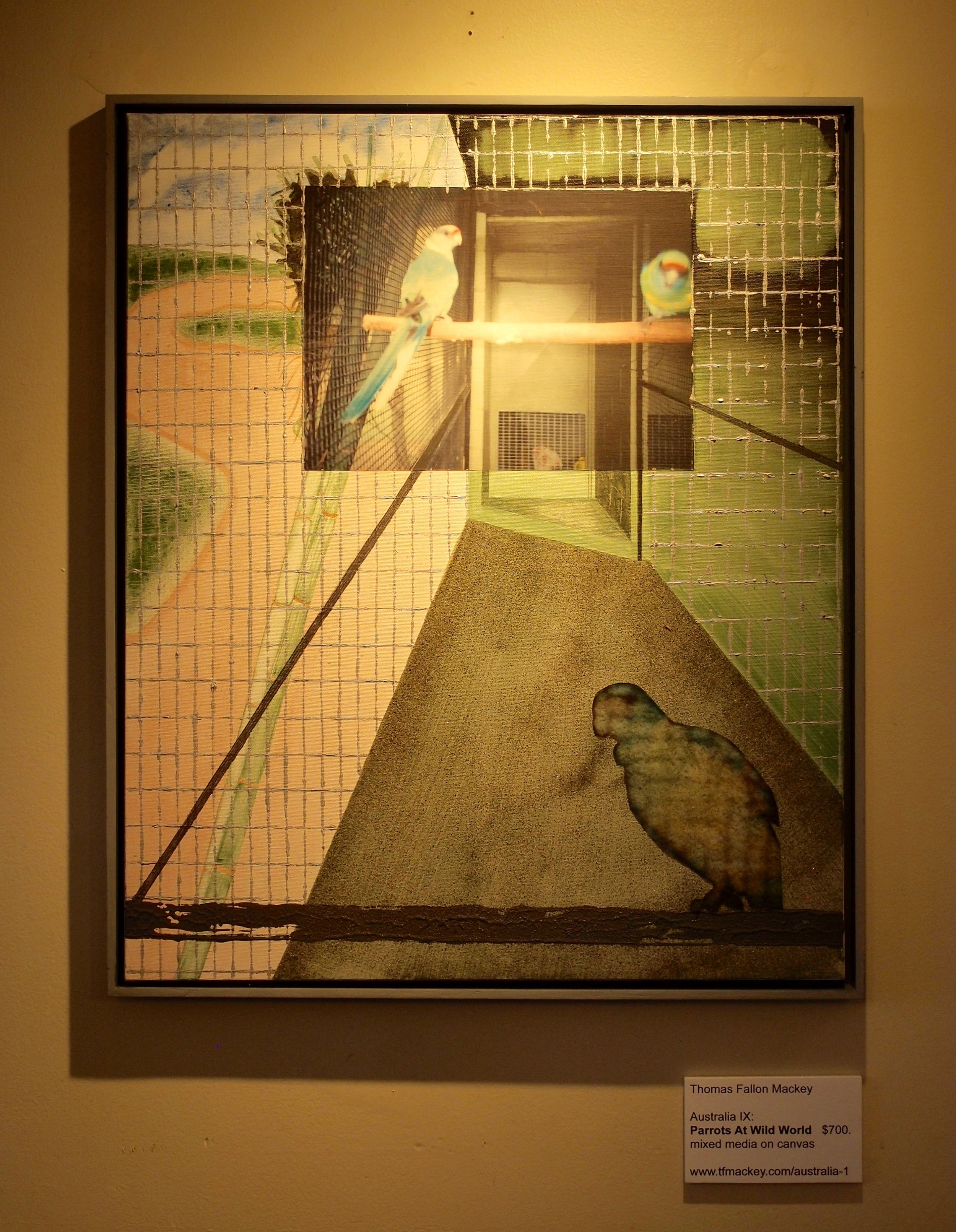 "Australia IX: Parrots At Wild World mixed media on canvas (25 x 21"")"
