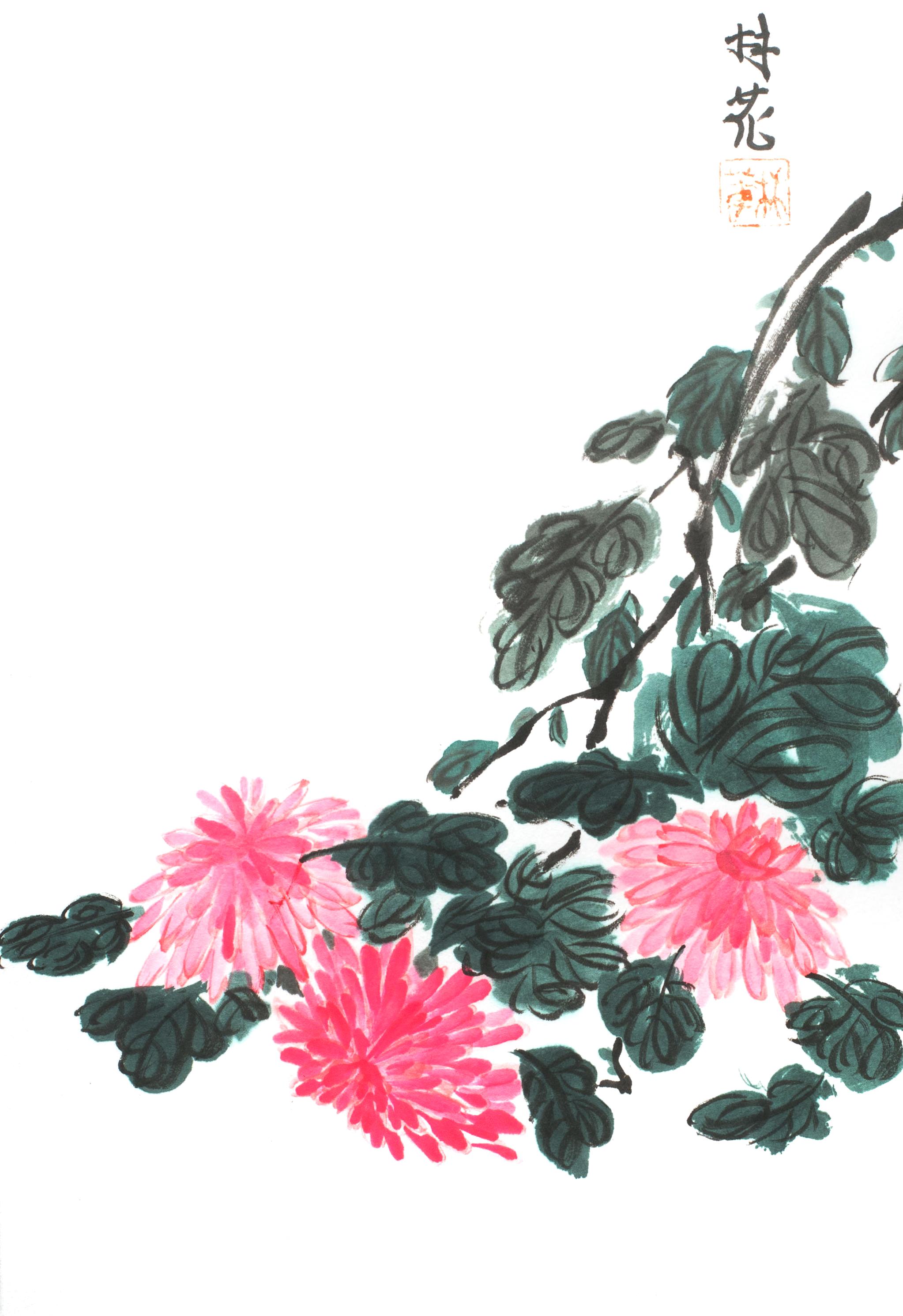 Chrysanthemum 4 Gentlemen 4.jpg