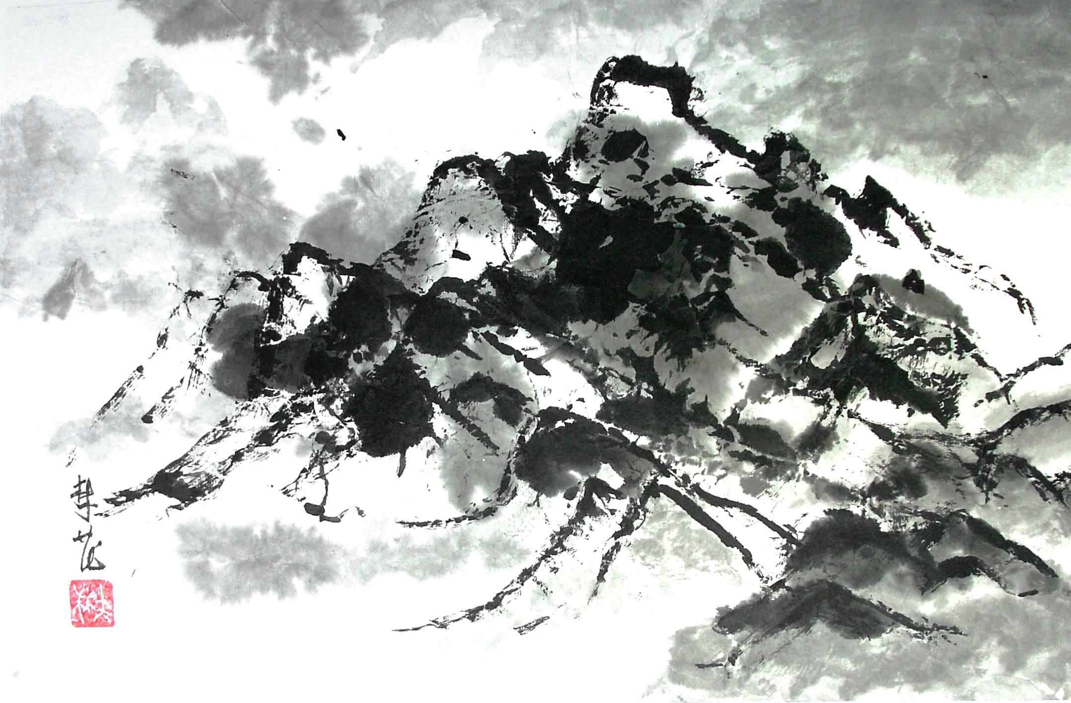 Salter flung ink.jpg
