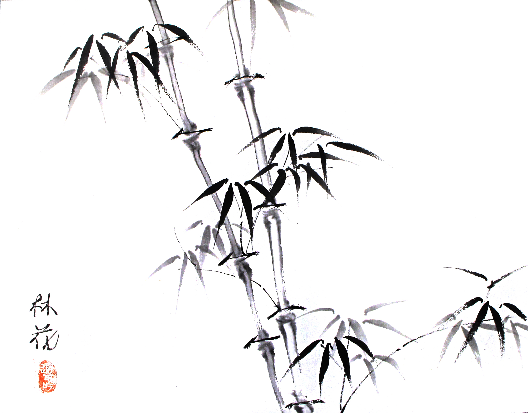 bamboo horizontal.jpg