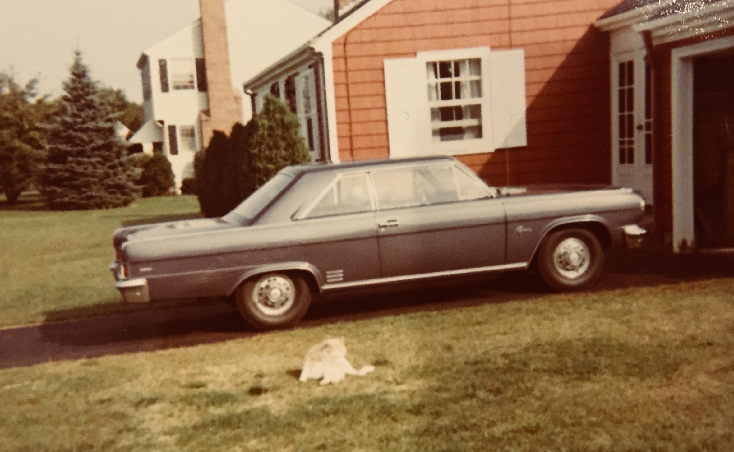 Mom's ill-fated '66 Rambler Rebel