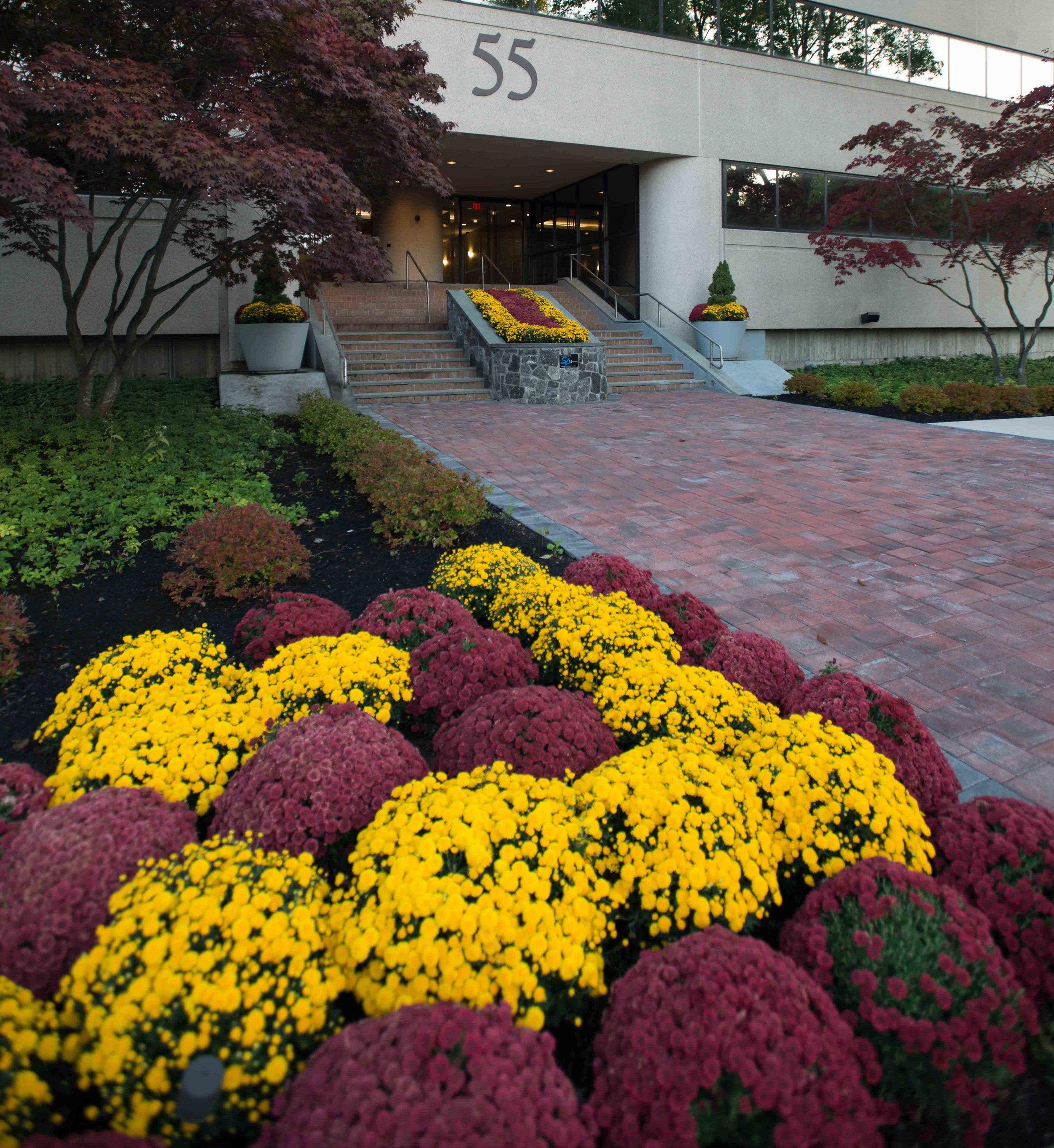 Westport Entrance-7684.jpg