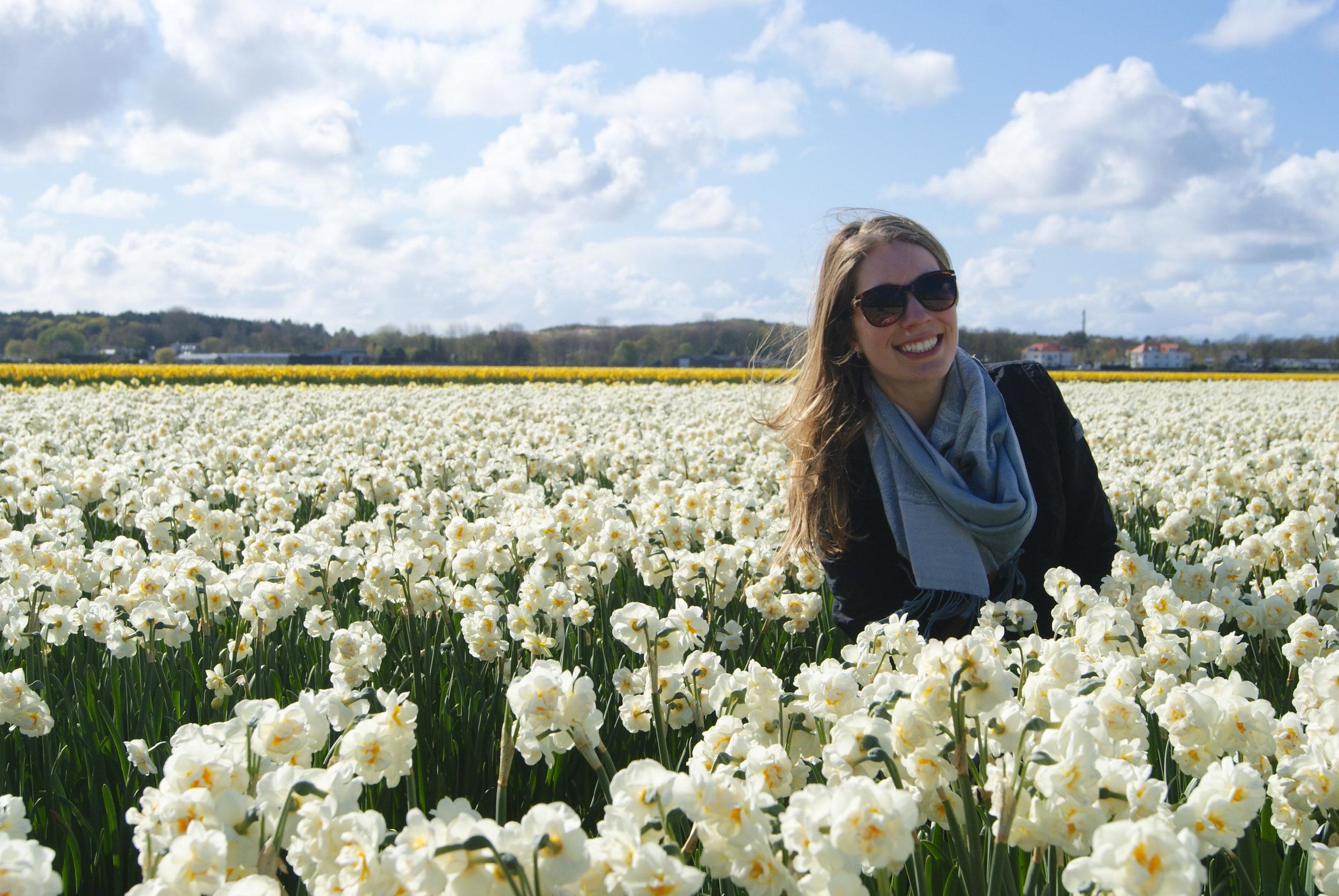 tulip fields Ellen