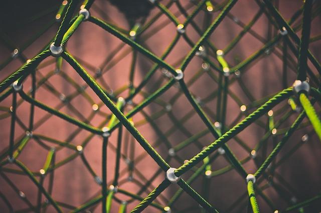 network-1246209_640.jpg