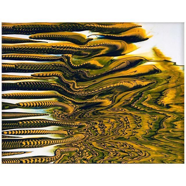 Art by @tau_au #taubaauerbach  #thelooneycollective #tlcart #contemporaryartcurator #artist #artsy #painting #tlc #drawing #illustration #contemporaryart #art #like4like  #gallery  #artdealer #artoftheday #artcurator #abstract #amazing #artdealer  #Tokyo #современноеискусство #artnet #fineart #추상 #그림스타그램