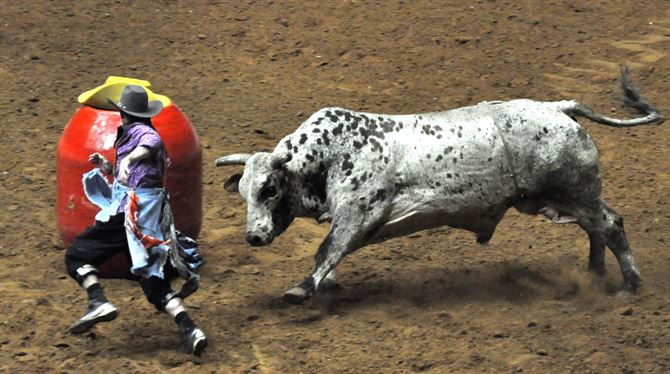 Bull Riding Before You Die Guy