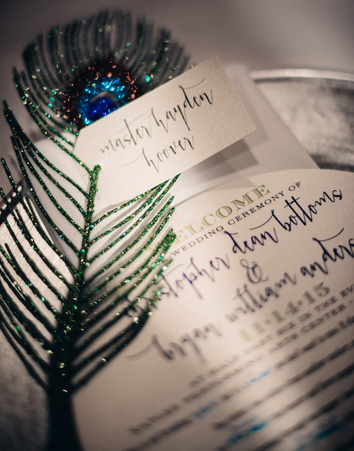 Naples Weddings Peacock Reception Matt Steeves Photography 1.jpg