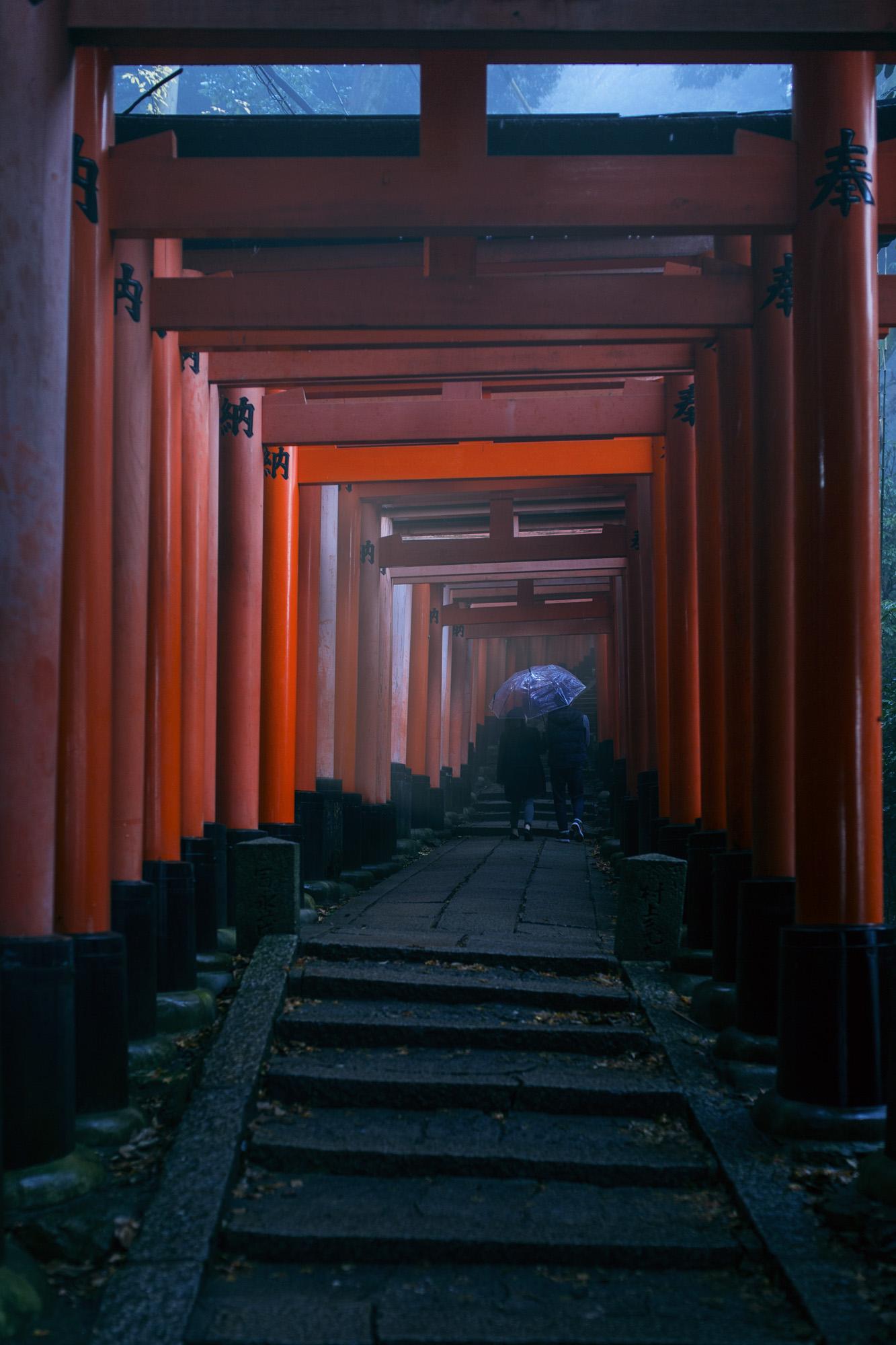 KYT_Fushimi_Gates(2).jpg