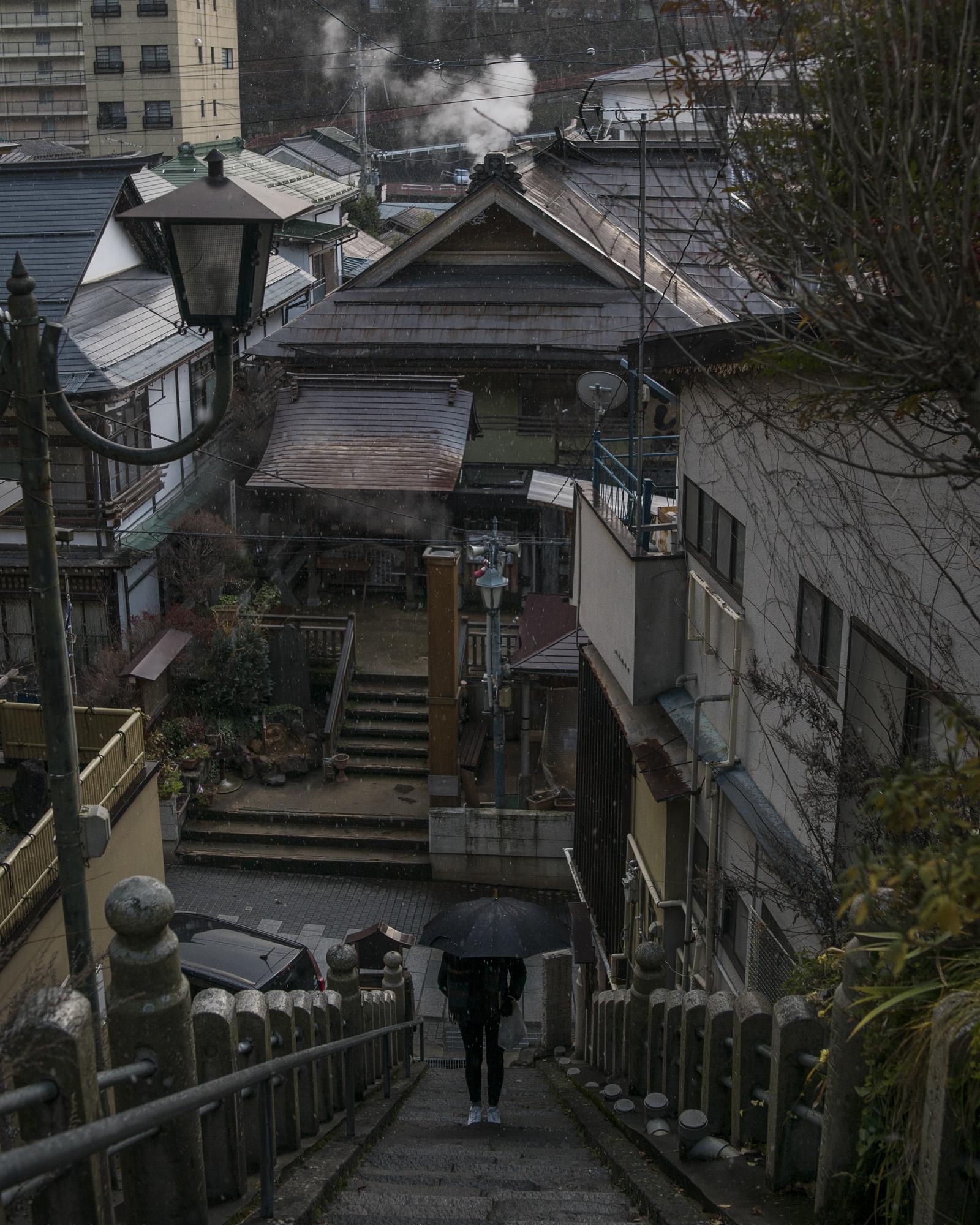 SHIB_Stairs_Snow.jpg