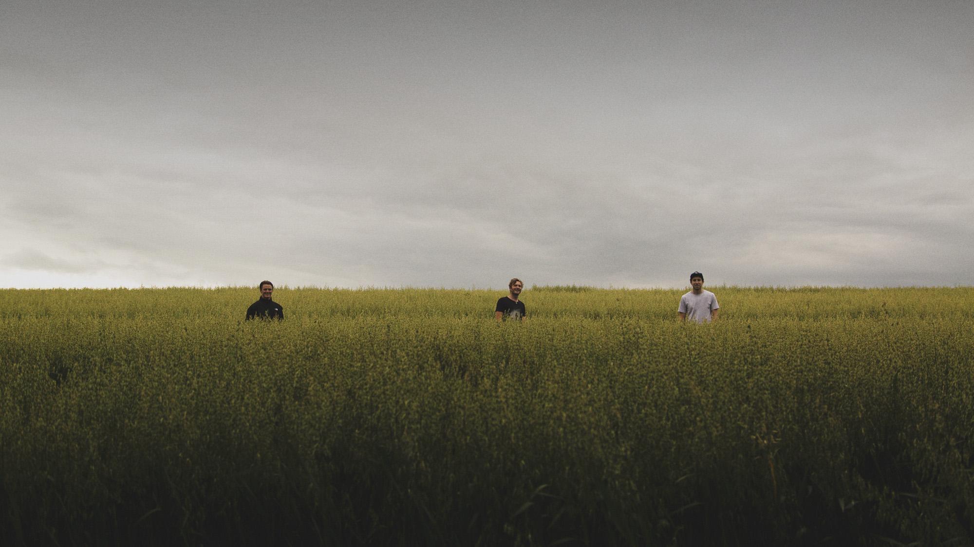 cunts standing in a field.jpg