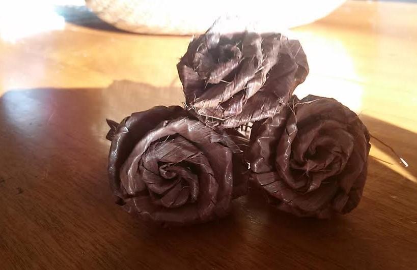 Cedar roses.jpg
