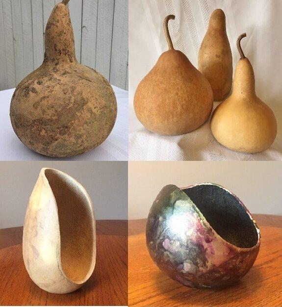 Jane Wilson Gourd Prep 101.jpg