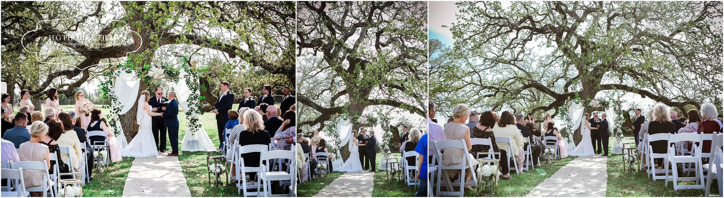 A perfect tree to get married under. Isnt it just gorgeous
