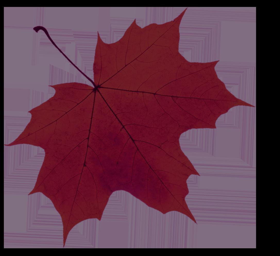 leaf-red.png
