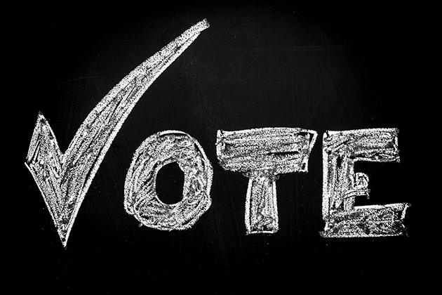 vote_sm.jpg