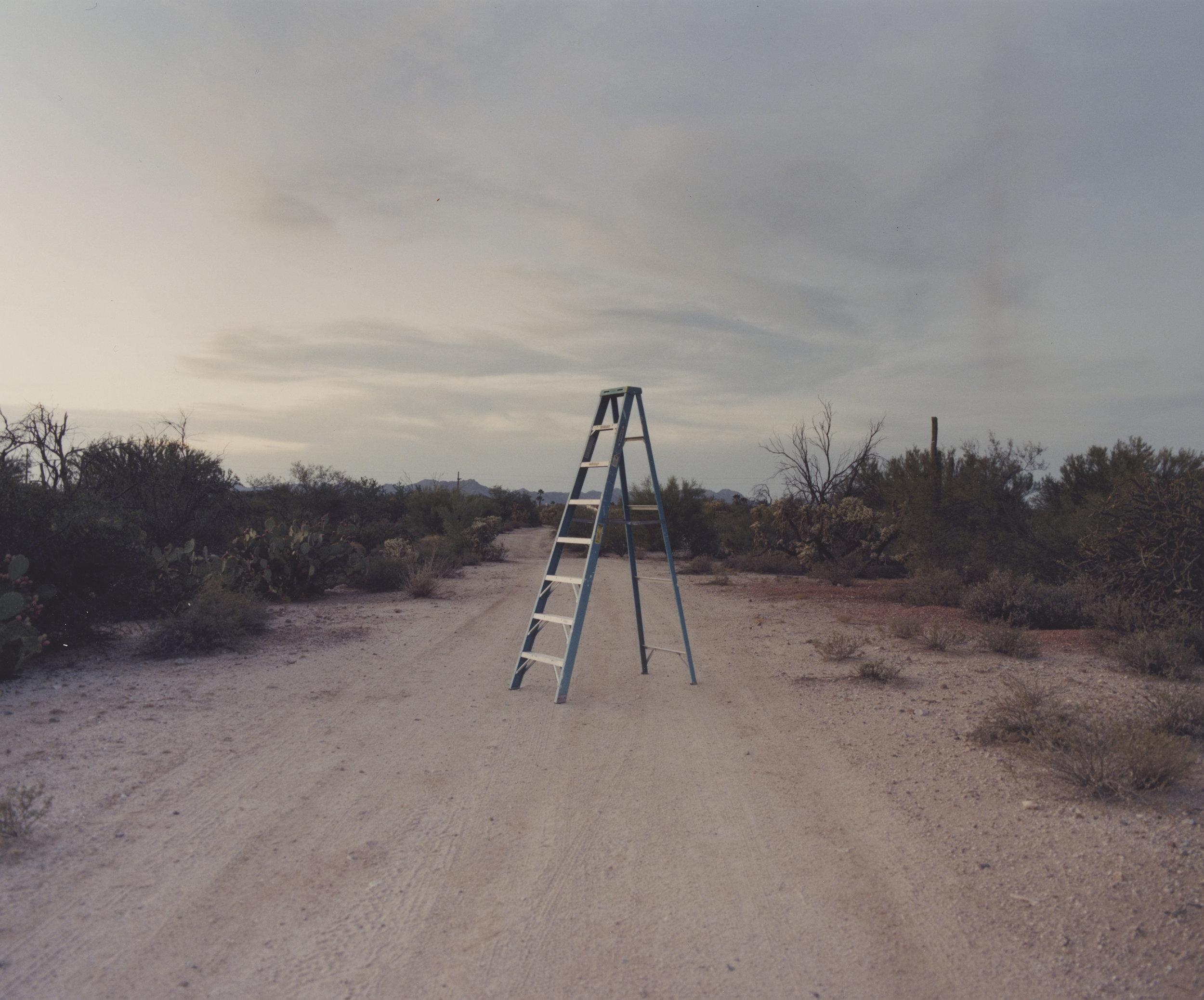 a ladder.jpg