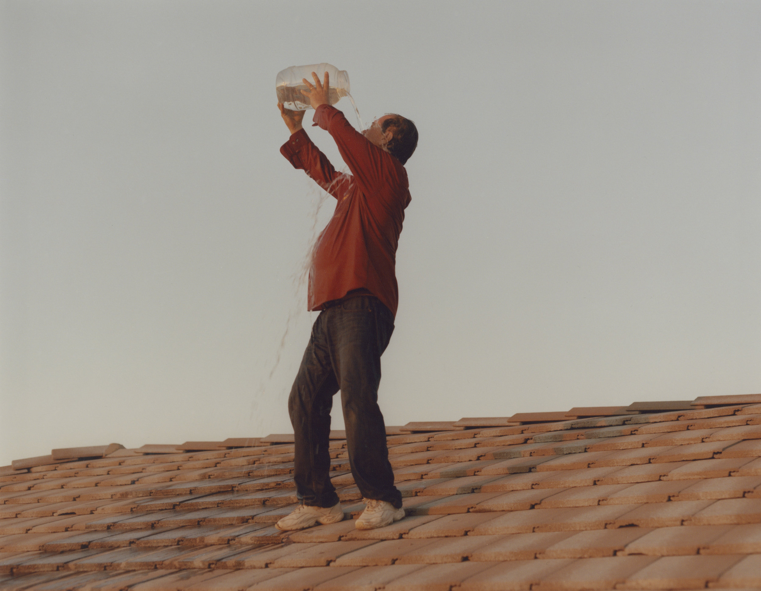 chip on the roof.jpg