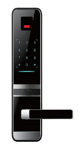 Sapphire for electronic ID & passcode systems for doors, gates & other security checkpoints