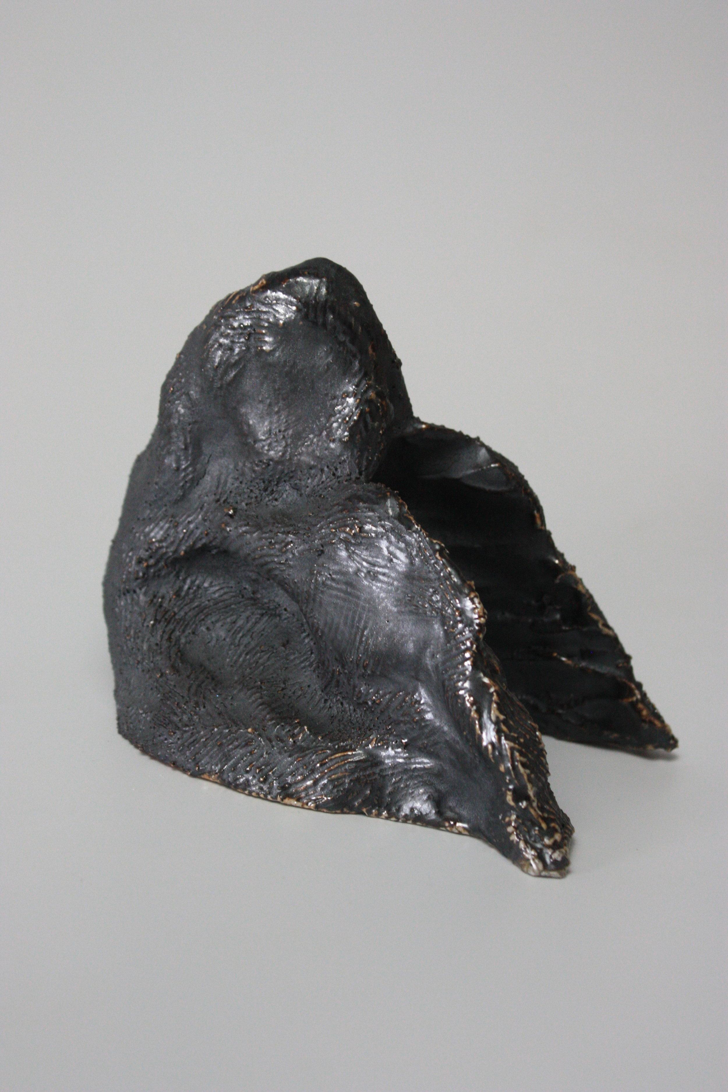 6 metalic side.JPG