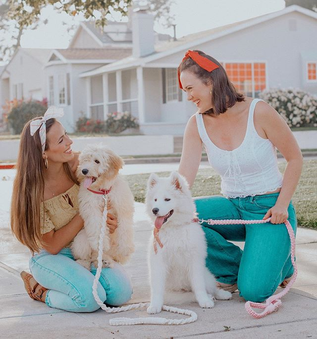 PUPPY PLAY DATE!!! 🐶 Two is soooo much better than one! @ninacbrock and I got our cutie pups together for a puppy play date a few days ago and look how darling they look in their macrame leashes from @ivory.paw 💗⁣ ⁣  @ivory.paw is a new brand I discovered that creates and sells hand woven, durable, and soft macrame dog leashes! Kara is sporting the classic pink and Bae has the twisted ivory leash. I absolutely LOVE this brand! Be sure to follow them and check out their site, they come in 5 different colors! 20 % at checkout 🙌🏻 #ivorypawpartner #ivory.paw @ivory.paw #macrame #macrameleash #macrame_community #macramedogleash #dogleashes #dogleash #madewell #abercrombiestyle